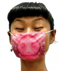 masks pig.jpg